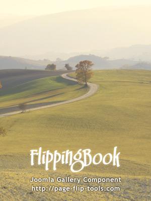 my-book_08